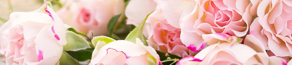 Rosenhochzeit