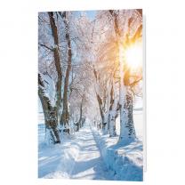 Stimmungsvolle Neujahrskarten mit edler Goldfolienprägung