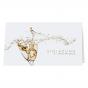 """Einladungen """"Champagner"""" im modernen Design."""