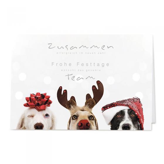 """Moderne Weihnachtskarten """"Hunde"""" im fröhlichen Design bestellen"""